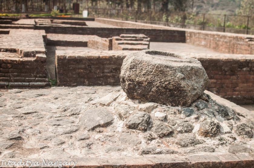 Sri Surya 15