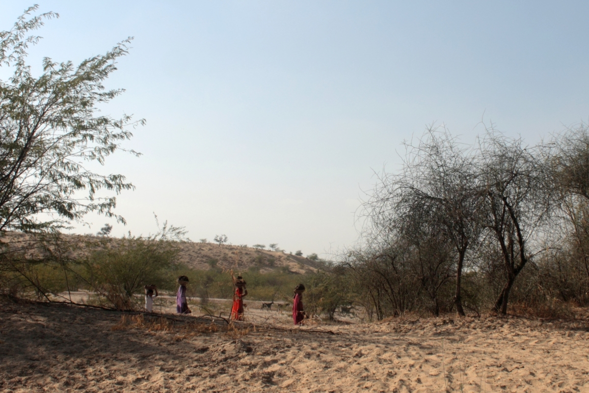 Water and Thar Desert – Stories from Indo-Pak Border