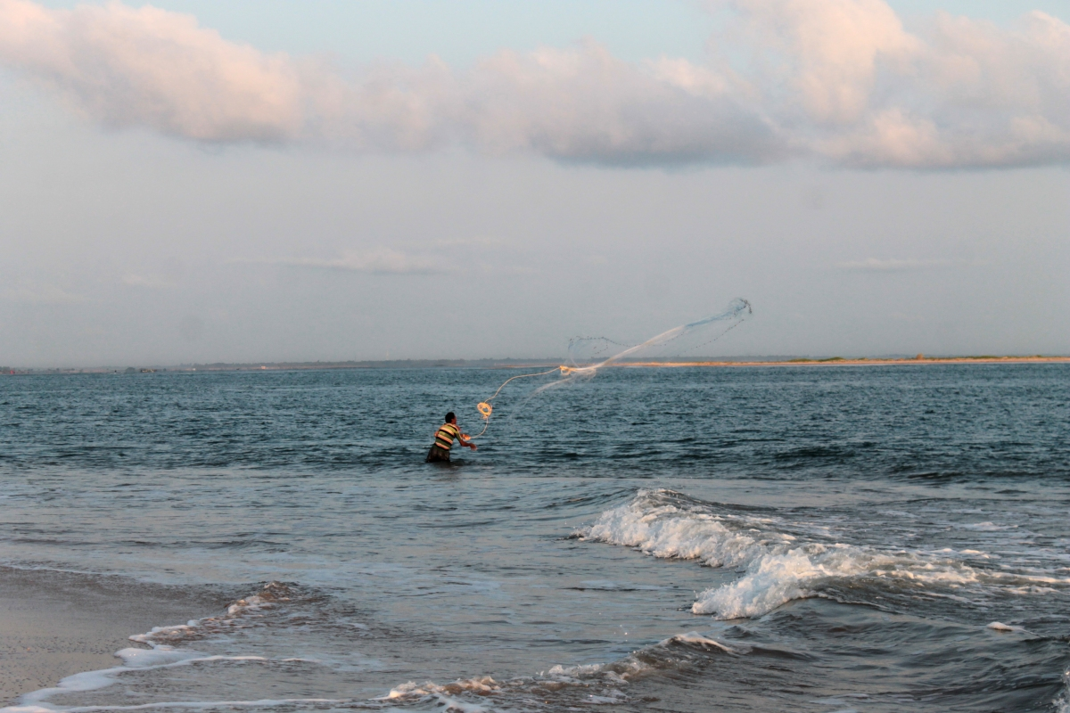 Sahana Beach and Devi Mouth – Odisha's Best KeptSecret